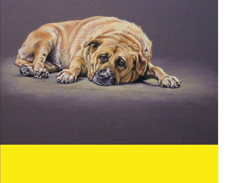 cuadros de perros - decoracion - arte loft galeria