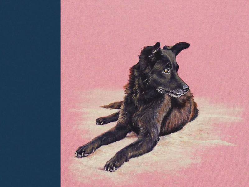 cuadros de perros - decoración - arte loft galería
